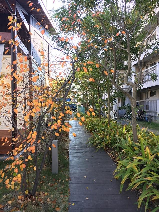 気持ちのいい木の家|愛知県安城市 暮らしのお店HUCKのお庭
