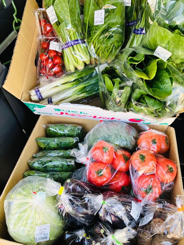 キャンペーン 愛知県安城市 暮らしのお店今週の野菜