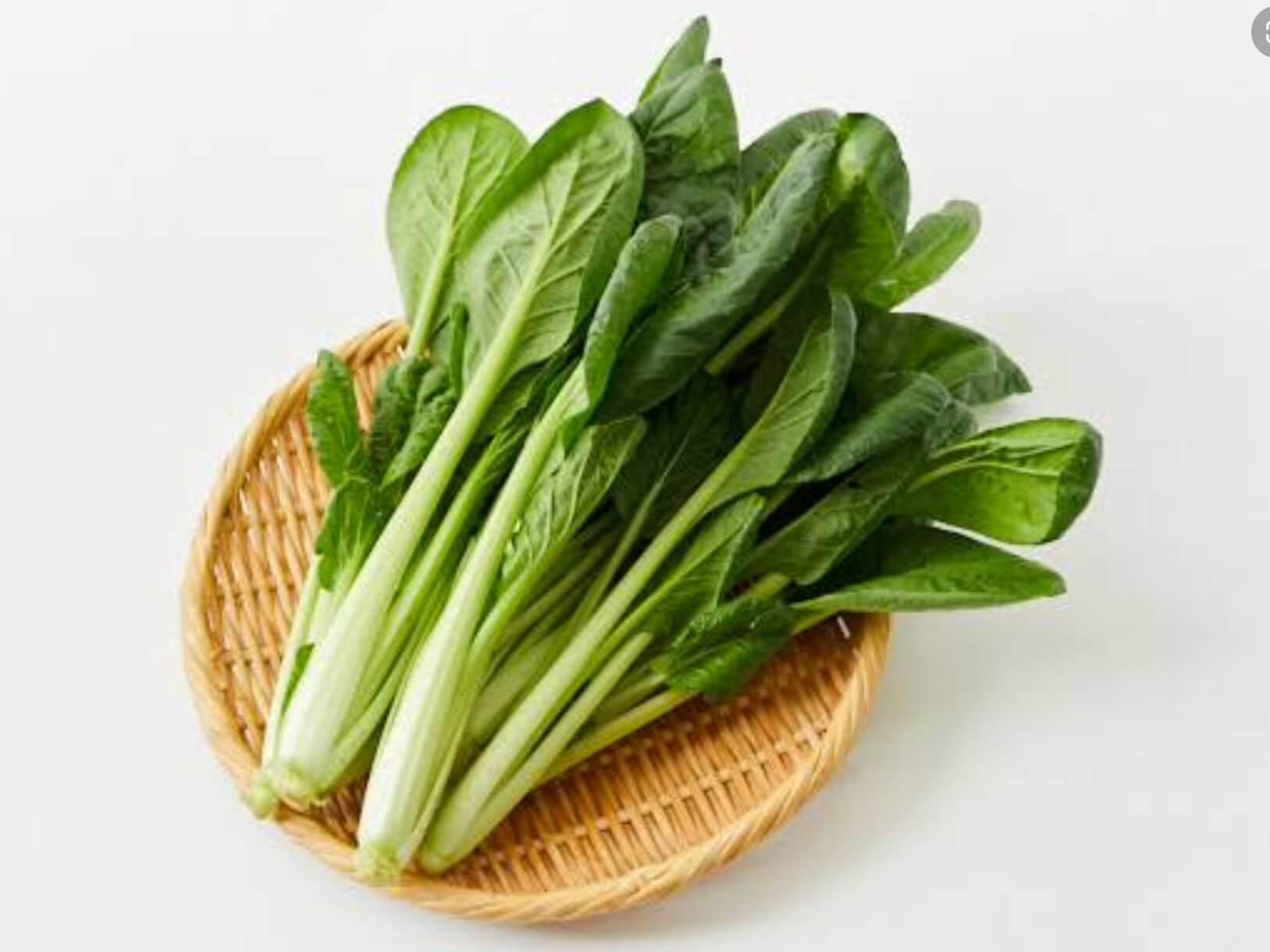 お知らせ|愛知県安城市 暮らしのお店野菜の紹介です