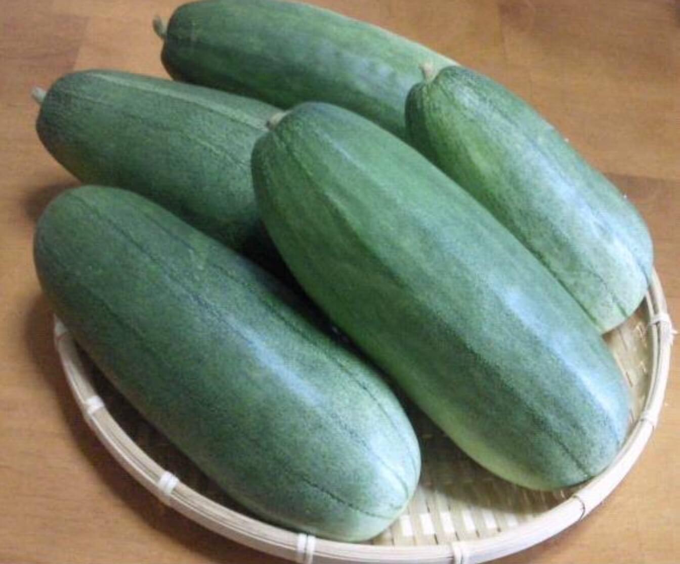 お知らせ|愛知県安城市 暮らしのお店野菜の紹介です【かりもり】