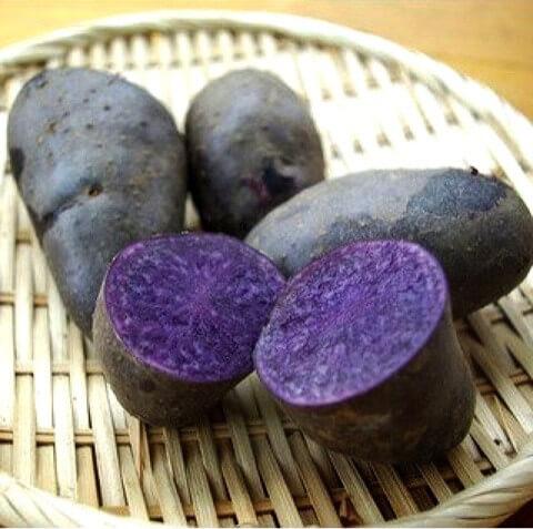 野菜の紹介です|野菜がおいしいごはん|愛知県安城市 暮らしのお店野菜の紹介です【シャドークイーン】