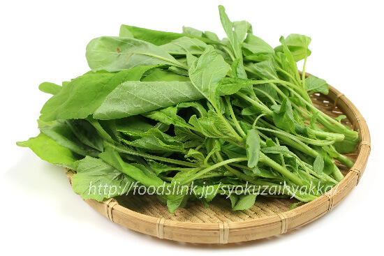 野菜の紹介です|野菜がおいしいごはん|愛知県安城市 暮らしのお店野菜の紹介です【ヒユナ】