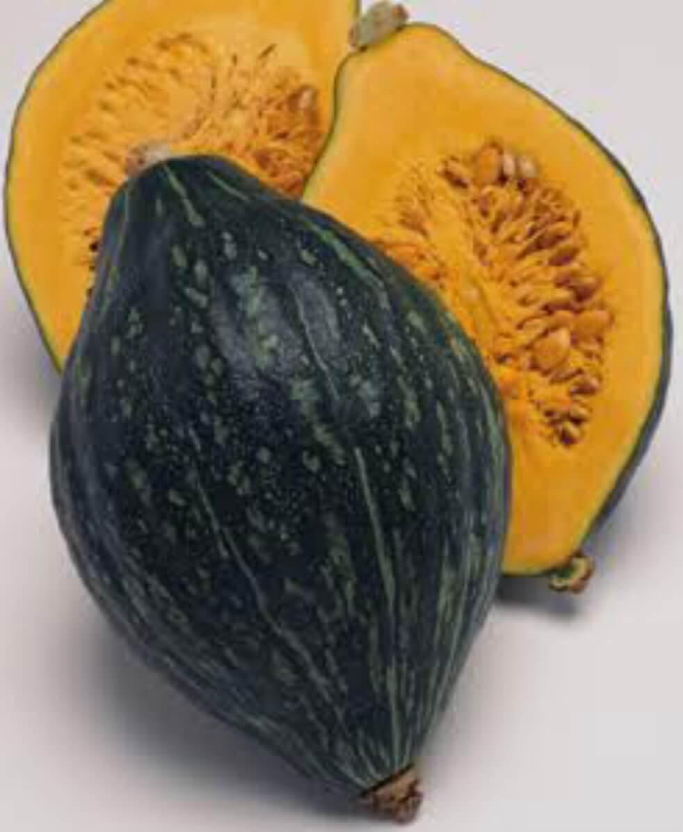 野菜の紹介です【ロロンかぼちゃ】