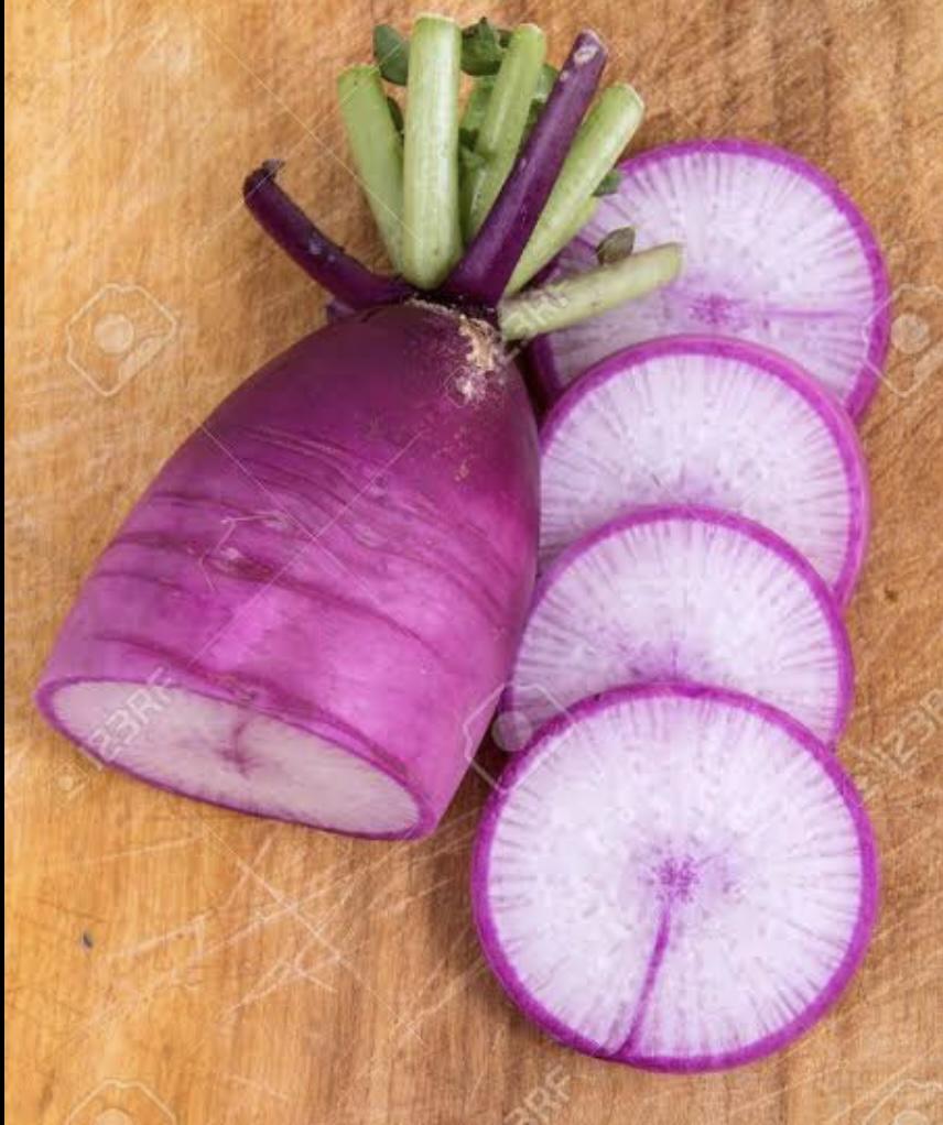野菜の紹介です【ビーツ】|野菜がおいしいごはん|愛知県安城市 暮らしのお店野菜の紹介です【紫大根】